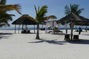 Farniente au Kono Kono à Zanzibar