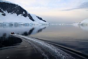 Antarctique en croisière