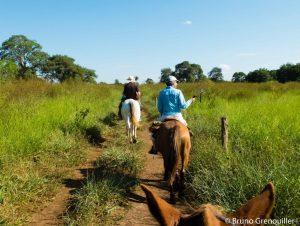 Balade-a-cheval-Pantanal-300x226