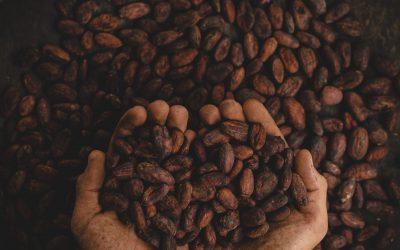 Colombie Carthagène et café