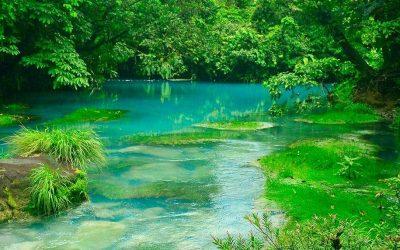 Costa Rica et Cahuita