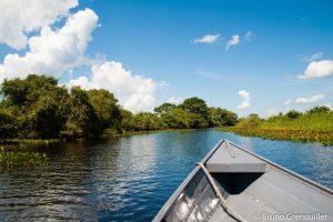 Promenade-en-bateau-Pantanal-300x200