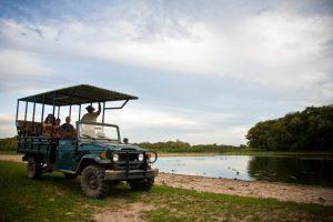 Safari-4x4-Pantanal-1-300x200