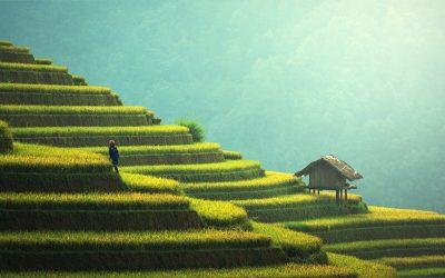 Bali, l'île des Dieux en hôtel de charme et chez l'habitant
