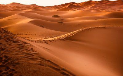 Namibie, Désert et Safari