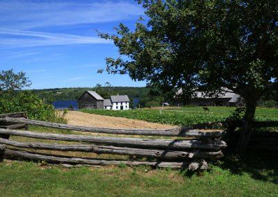 farm-2406449_1280