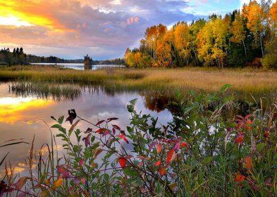 landscape-4535199_1280