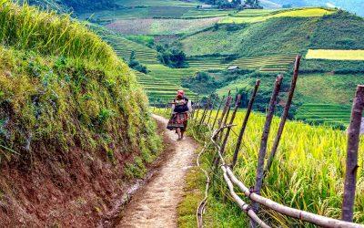 Le Laos, Royaume de Millions d'Éléphants